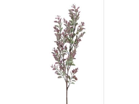 Hedge Pink-Green
