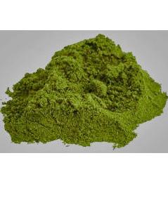 Hemp Seed Protein Powder 45% - 1 Kg