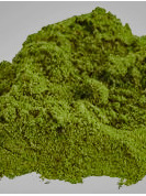 Hemp Seed Protein Powder 45% - 500g