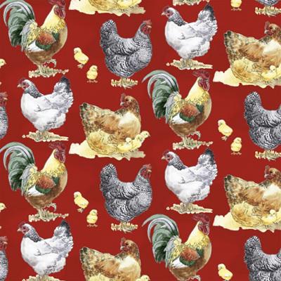 Hen House - Chickens