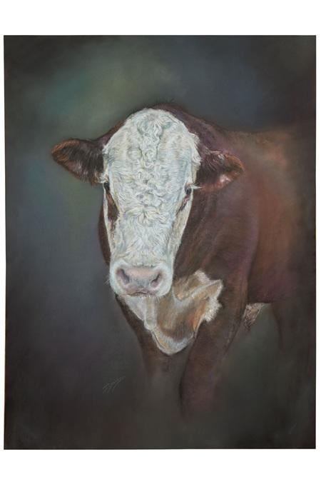Hereford Bull by Julie Davidson