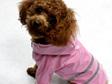 Hi-Vis Raincoat - Pink