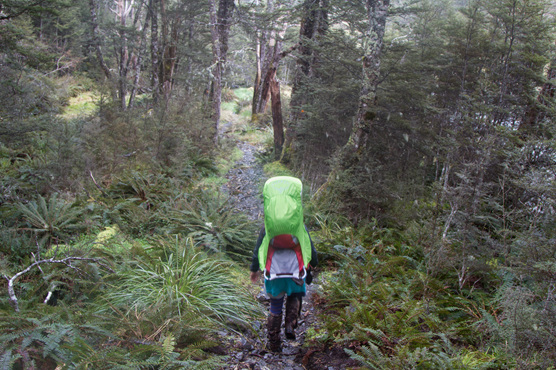 hiking tramping baby carrier rain nz