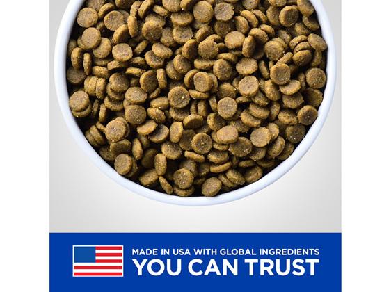 Hill's Prescription Diet k/d Kidney Care Dry Dog Food