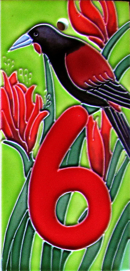 HN6 Number '6' New Zealand Saddleback
