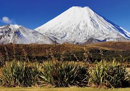 Holdson's 100 Piece Jigsaw Puzzle: Mt Ngauruhoe Tongariro National Park