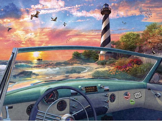 Holdson 1000 piece puzzle Cape hatteris Birds buy at www.puzzlesnz.co.nz
