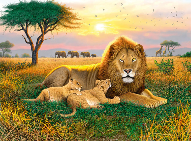 Holdson 1000 piece puzzle Kings of the Serengeti buy at www.puzzlesnz.co.nz