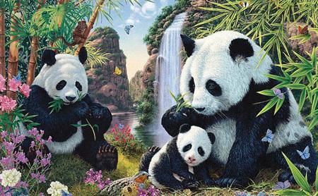 Holdson 300 XL Piece Jigsaw Puzzle: Panda Valley