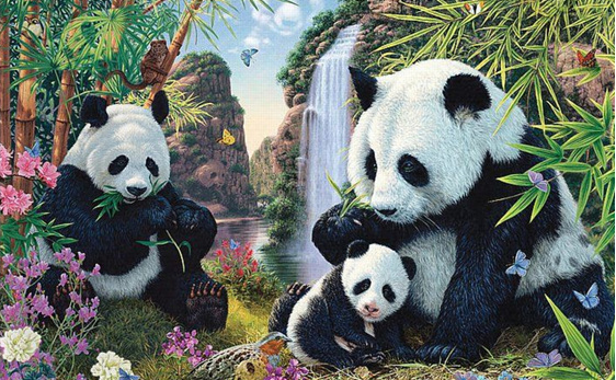 Holdson 300XL jigsaw puzzle Panda Valley buy online at www.puzzlesnz.co.nz