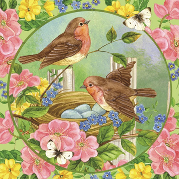Holdson's 500 Piece Jigsaw Puzzle: Robyns And Roses