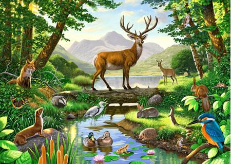 Holdson's 1000 Piece Jigsaw Puzzle:  Woodland Harmony