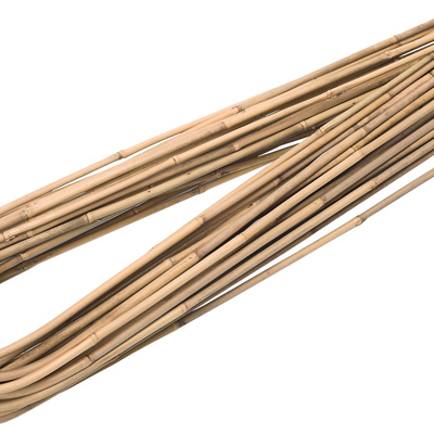 Hoop Canes 120cm 12-14mm 100p