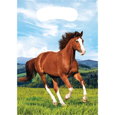 Horse lootbags x 8