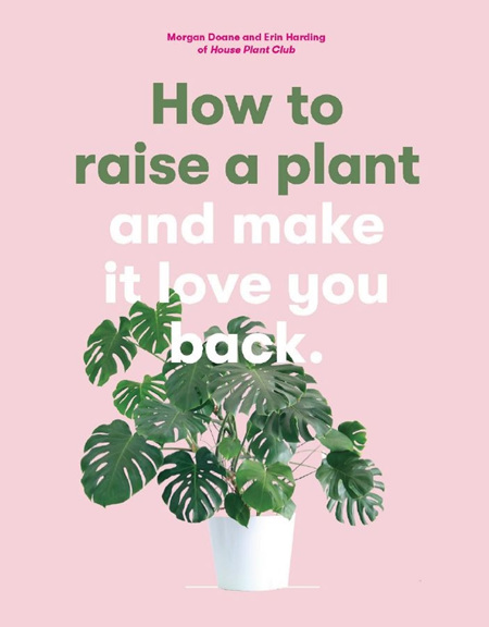 How to Raise a Plant (and Make it Love You Back)