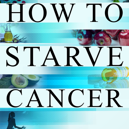 How To Starve Cancer (Soft Cover Book)