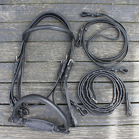 HP Double Bridle