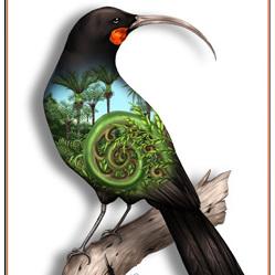 Huia Birds Eye View - A4 Print