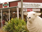 hunterville trading co