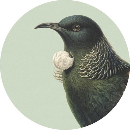 Hushed Bird Coaster or Placemat