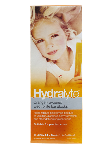 Hydralyte Ice Blocks Orange 16