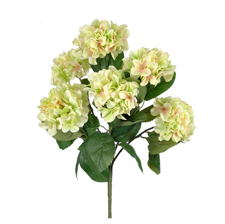 Hydrangea Bush Light Green 4483