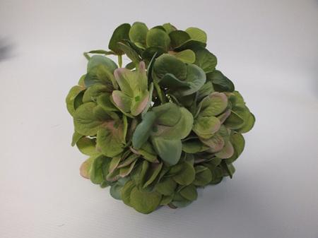 Hydrangea French Dark Green 4521