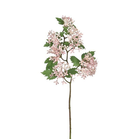 Hydrangea Lace Pink 4548