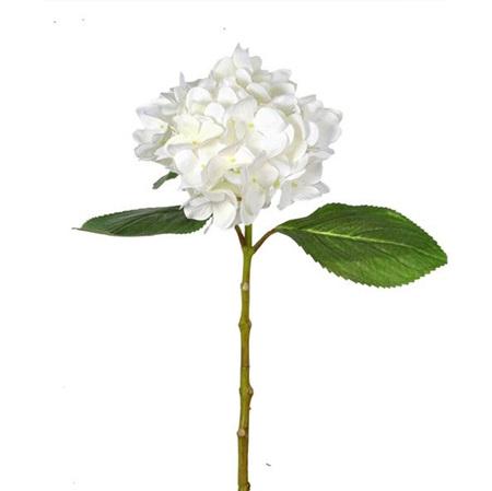 Hydrangea Stem White 4541