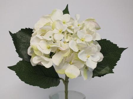 Hydrangea Stem White  Blush 4024