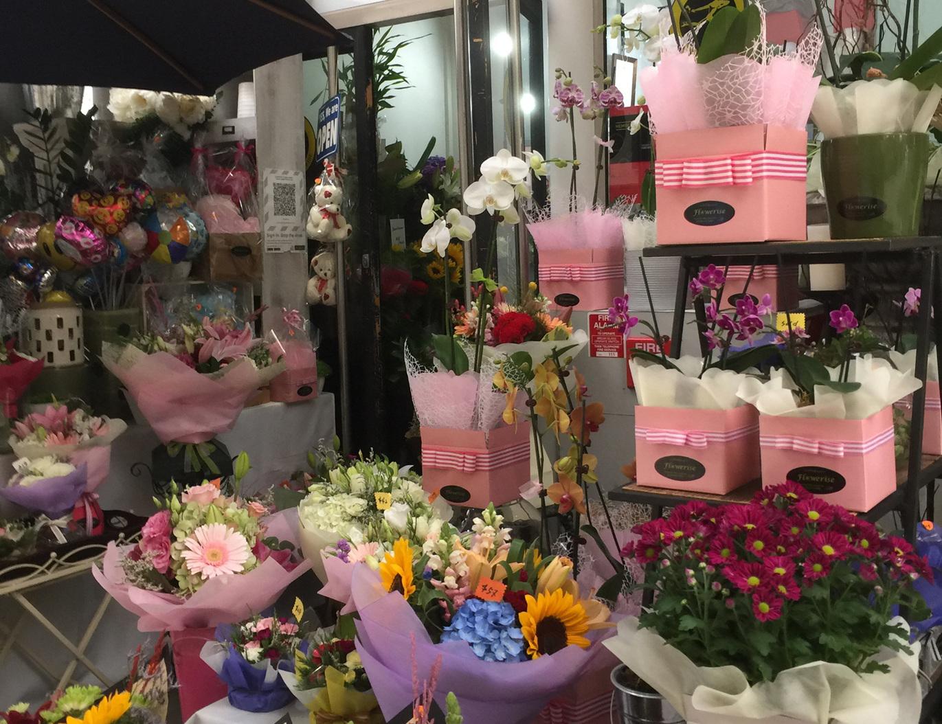 Flowerise at Royal Oak Mall