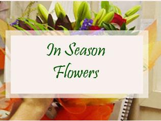 In Season Flowers