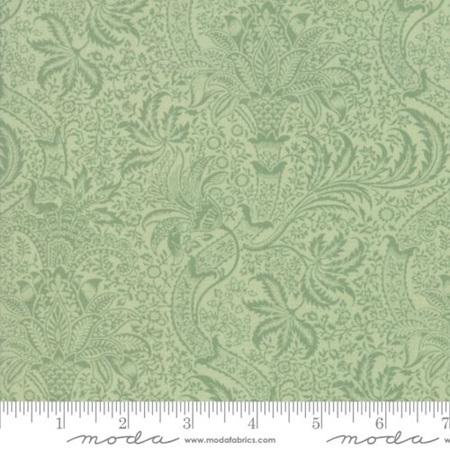 Indian Sage 33498-13