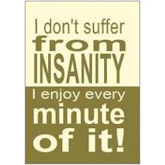 Insanity Fridge Magnet
