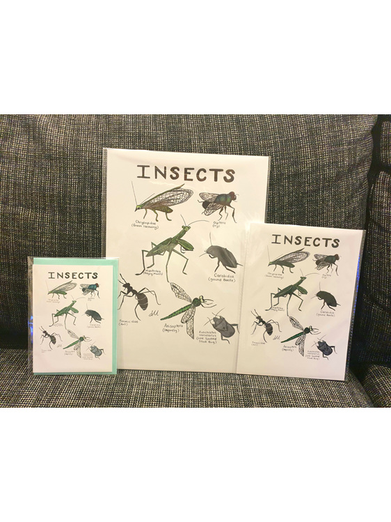 Insects Greeting Card