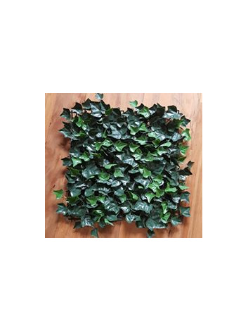 ivy wall timaru wedding and event hire