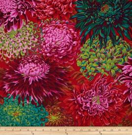 Japanese Chrysanthemum Scarlett