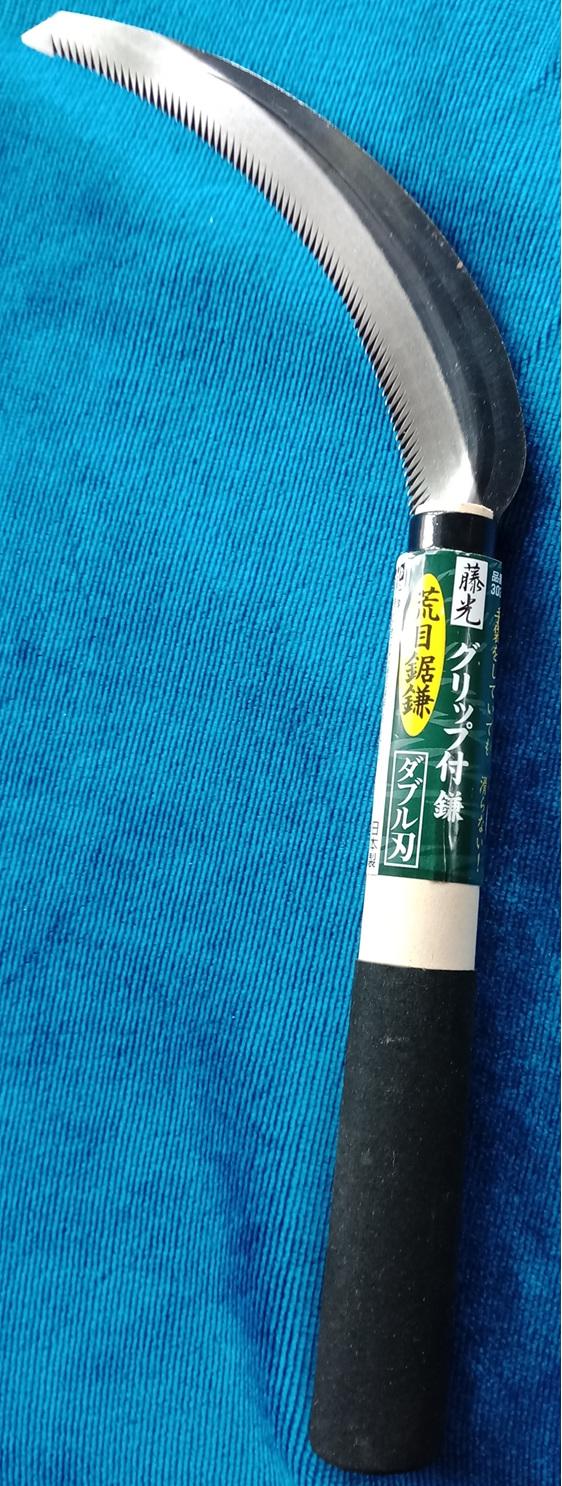 Japanese shark