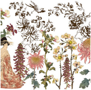 Japonica IOD Decor Transfer