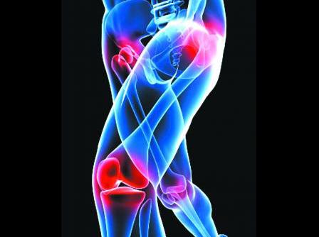Joint & Bone Health