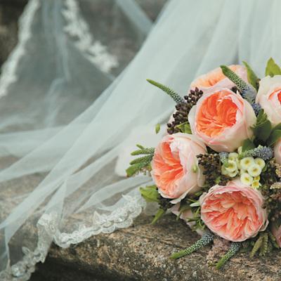 David Austin Cut Roses