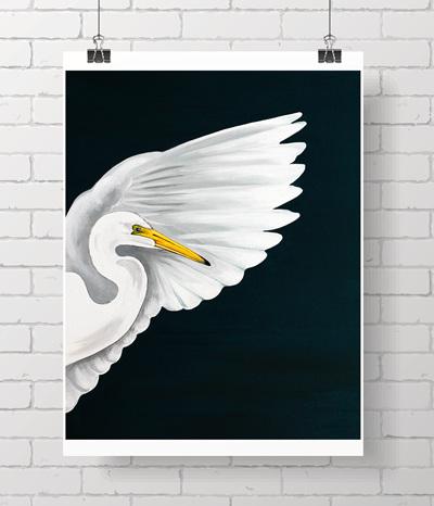 kōtuku, white heron