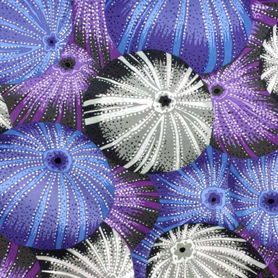 Kaffe Fassett Collective - Sea Urchins Grey