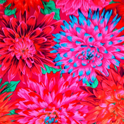 KF Collective - Cactus Dahlias Red