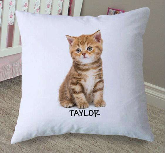 Kitten Personalised Cushion Cover