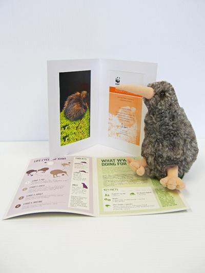 Adopt a kiwi