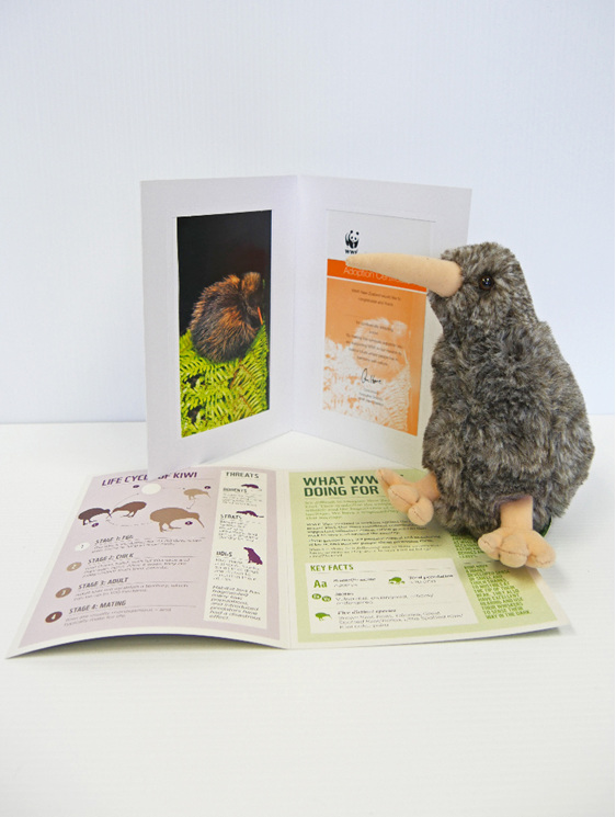 Kiwi adoption pack