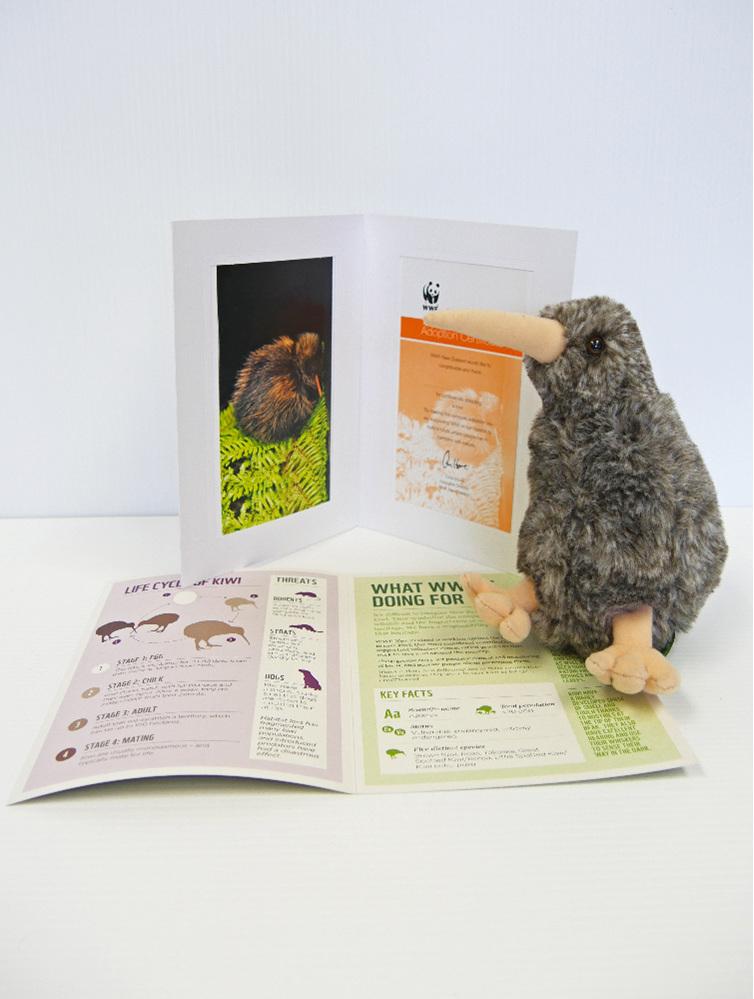 Kiwi adoption pack