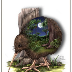 Kiwi Birds Eye View - A4 Print