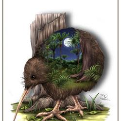 Kiwi Birds Eye View - Card